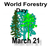 World Forestry Day